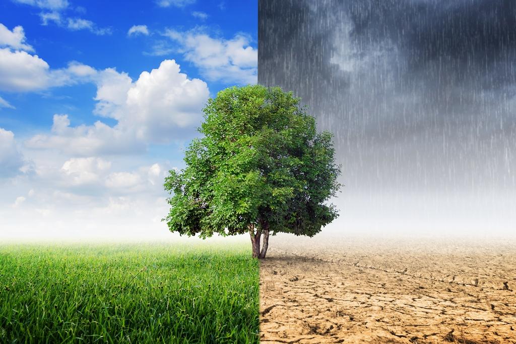 Reif Für Die Transformation? Gedanken Gegen Die Klima-Agonie