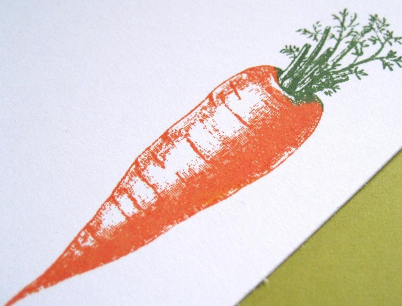 Carrot_by_Kathryn_Rotondo-830x631